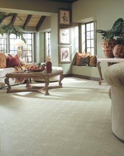 Carpet Flooring in San Jose